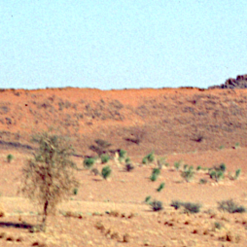 A hot dry landscape in Western Sudan